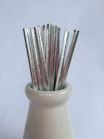 Solid Silver  - Paper Straws